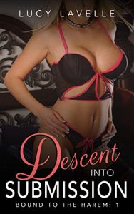 Book Cover: Descent Into Submission: Bound to the Harem Book 1