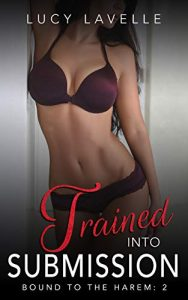 Book Cover: Trained Into Submission: Bound to the Harem Book 2