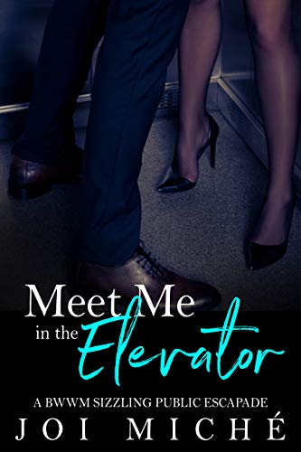 Book Cover: Meet Me in The Elevator: A BWWM sizzling public escapade
